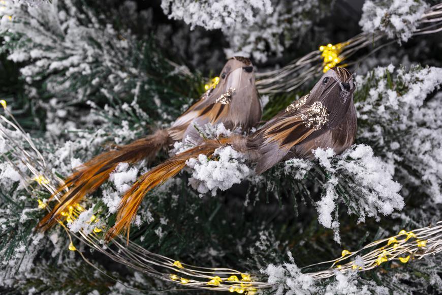 Vtáčatká so štipcom MagicHome, hnedé, pár, 15x5x5 cm