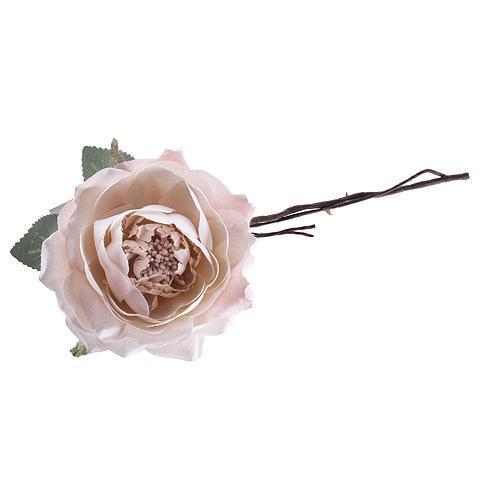 Kvet ruža rozvitá, svetloružová, stonka, bal. 6 ks