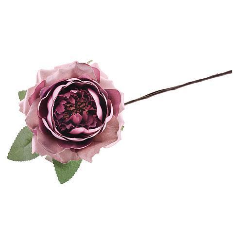 Kvet ruža rozvitá, tmavo ružová, stonka, bal. 6 ks