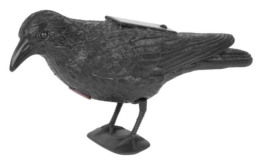 Plasic vtákov Havran čierny, solarny, zvuk
