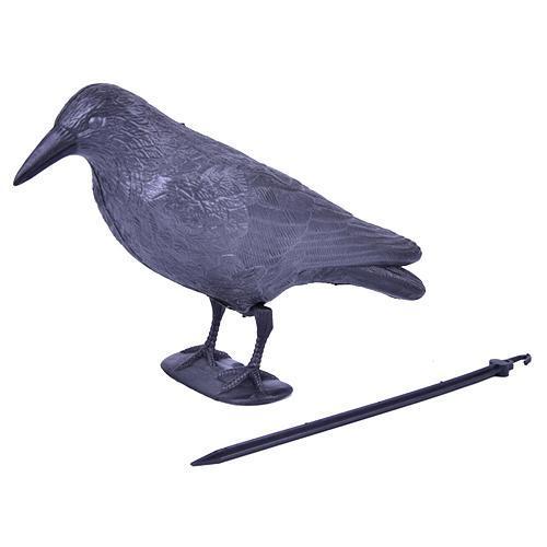 Plašič vtákov Havran čierny, 38 cm