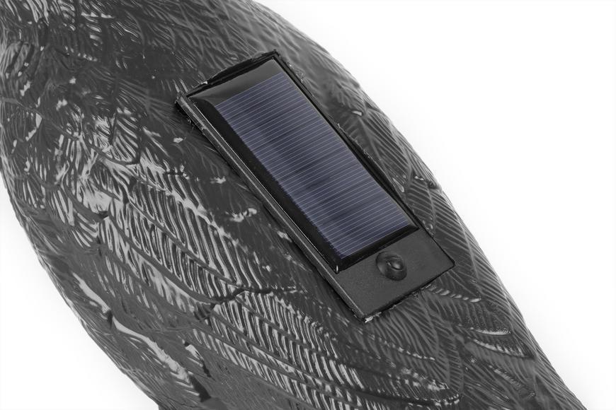 Plašič vtákov Havran čierny, solárny, zvuk