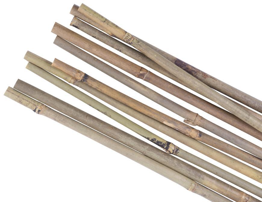 Tyč Garden KBT 1050/10-12 mm, 10 ks, bambus