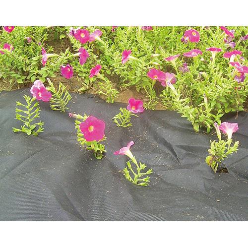 Textília Garden B1303 3,2x10 m, netkaná, 50 g/m, čierna