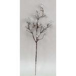 Vetvicka Sedum.Silver, strieborná, 14/30 cm, bal. 3 ks